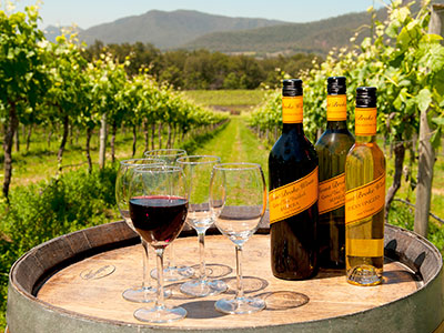 Best Hunter Valley Wine Tours In Crimea In Crimea